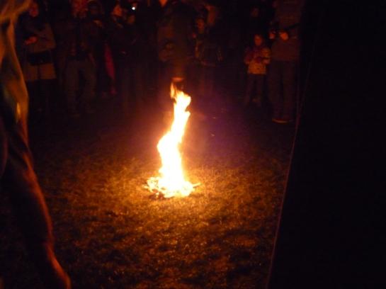 torchlightparade2014 057