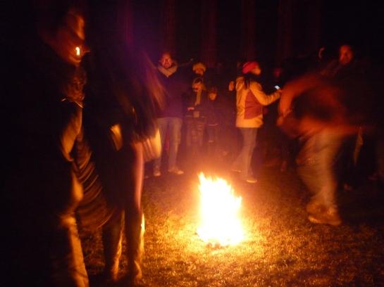 torchlightparade2014 058