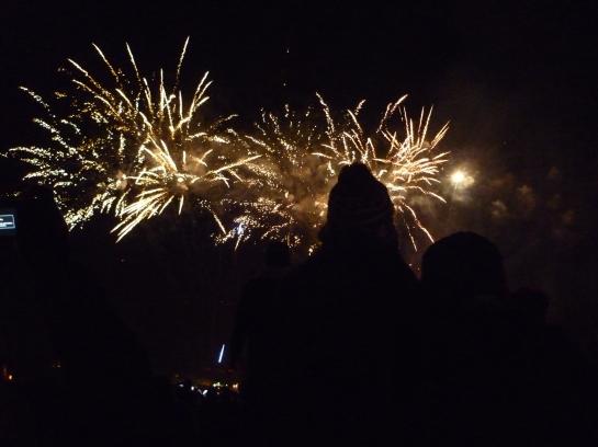 torchlightparade2014 069