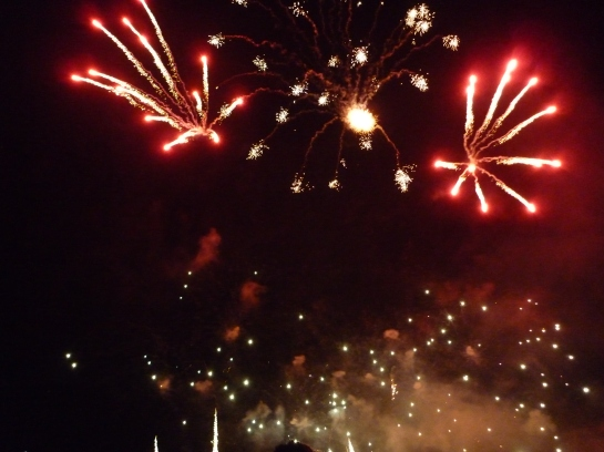 torchlightparade2014 070